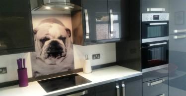 Стеклянный кухонный фартук с изображением бульдога