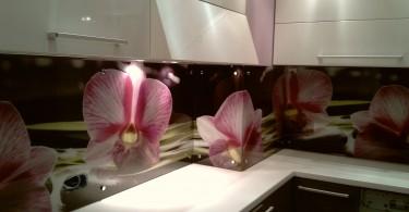 Фото цветка орхидеи на стеклянном кухонном фартуке