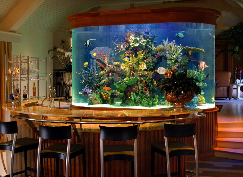 Полукруглая барная стойка и завораживающий аквариум в интерьере бара-ресторана