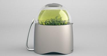 Новый подход к традиции приготовления чая с разработкой Dew