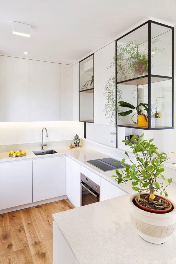 Стеклянные навесные шкафы для растений на кухне