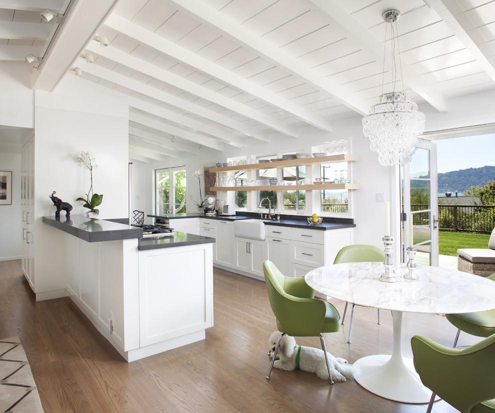 Оригинальный дизайн интерьера кухни в классическом стиле от Feldman Architecture, Inc.
