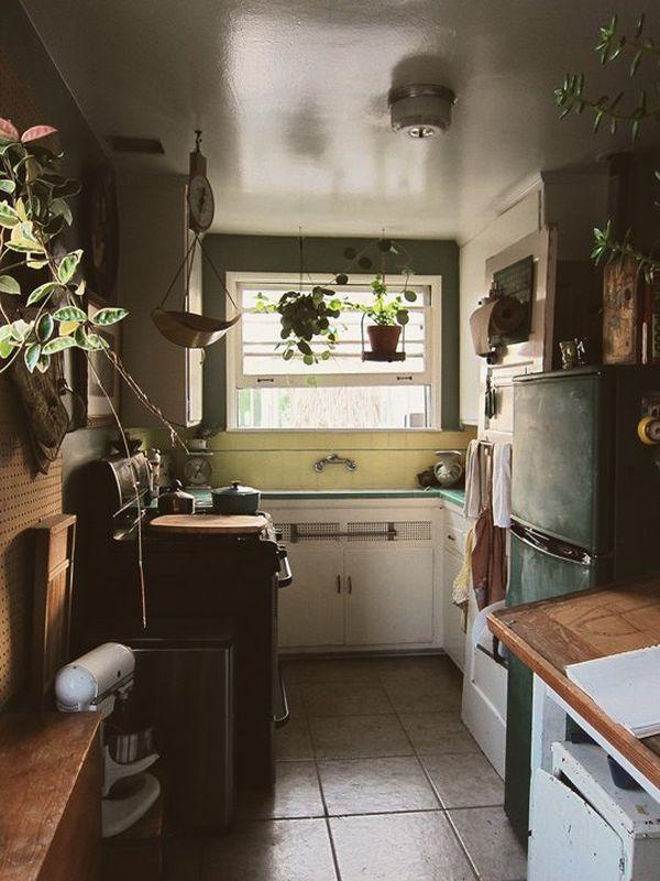 Зелёные домашние растения в интерьере кухни